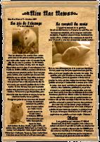 Journal de la gerbille du mois d'Octobre 2009